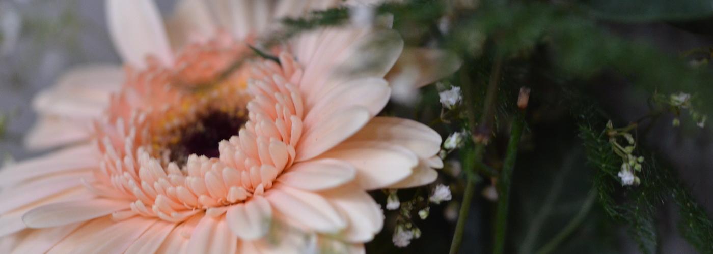 Trauung Blume